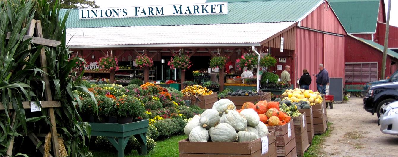 Linton's Farm Market Banner